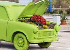Blumen unter der Haube eines alten Autos Lizenzfreie Stockfotografie