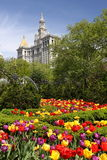 Blumen in untererem Manhattan Stockfoto