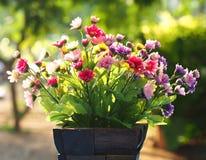 Blumen-Vase Lizenzfreie Stockfotos