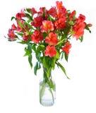 Blumen-Vase Lizenzfreie Stockfotografie