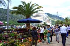 Blumen vermarkten in Kotor, Montenegro Stockfotografie