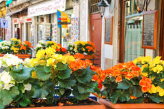 Blumen verzieren das Café im Freien auf dem Markt in Venedig, Italien Lizenzfreie Stockfotos