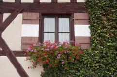Blumen verzieren Fenster am Schloss Lizenzfreies Stockfoto