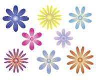 Blumen-Vielzahl-Satz Lizenzfreie Stockfotografie
