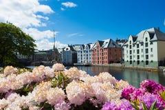 Blumen von Alesund Stockfotos