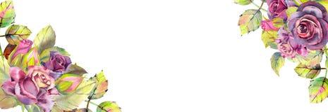 Blumen von dunklen Rosen, gr?ne Bl?tter, Zusammensetzung Horizontale Rahmenorientierung Das Konzept der Heiratsblumen lizenzfreie abbildung