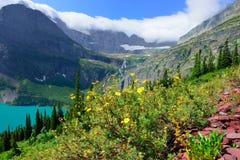 Blumen vor dem Gletscher und dem See Grinnell im Glacier Nationalpark Lizenzfreie Stockfotografie