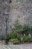 Blumen vor historischem Gebäude lizenzfreies stockbild