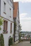 Blumen vor historischem Gebäude lizenzfreie stockbilder
