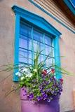 Blumen vor Santa Fe Gallery Window Lizenzfreie Stockfotografie