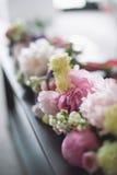 Blumen während bilden 2 Lizenzfreies Stockbild
