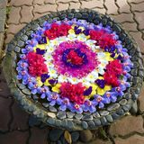 Blumen-Wanne Lizenzfreies Stockbild