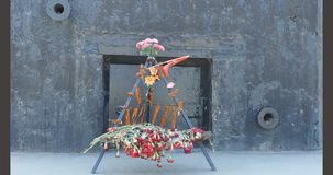 Blumen zu den Soldaten der Verteidiger von Leningrad stock video