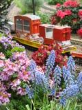 Blumen-Zug Stockfotos