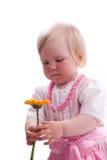 Blumen zum Muttertag stockfotografie