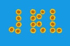 Blumenalphabet gebildet von den Blumen der Sonnenblume. Stockbild