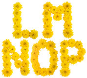 Blumenalphabet. L, m, N, O, P. Stockfoto
