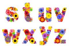 Blumenalphabet lokalisiert auf weiß- Buchstaben S, T, U, V, W, X, Y, Z Lizenzfreies Stockbild