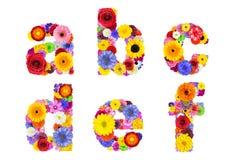 Blumenalphabet lokalisierte auf weiß- Buchstaben A, B, C, D, E, F Stockbild