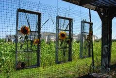 Blumenanordnung auf einem Drahtrahmen Stockfotografie