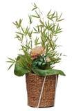 Blumenanordnung für Peonblume, Lotosblatt und Zweige von bambo Stockbild