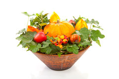 Blumenanordnung für Halloween Stockfoto