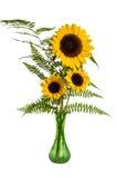 Blumenanordnung mit Farnen und Sonnenblumen Stockbilder