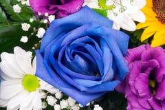 Blumenanordnungsnahaufnahme Lizenzfreies Stockfoto