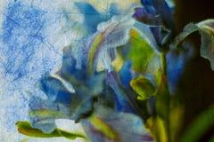Blumenaquarell-Hintergrund Lizenzfreie Stockbilder