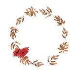 Blumenaquarellkranz mit Beigeblättern und zwei roten Blumen auf einem weißen Hintergrund Lizenzfreies Stockfoto
