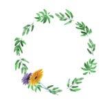 Blumenaquarellkranz mit tiefgrünen Blättern und zwei Blumen auf einem weißen Hintergrund Lizenzfreie Stockfotografie