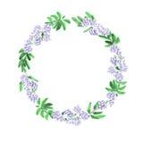 Blumenaquarellkranz mit violetten Blumen und tiefgrünen Blättern auf einem weißen Hintergrund Lizenzfreie Stockbilder