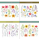 Blumenaquarellsammlung mit Blättern und Blumen Hochzeitssammlung Lizenzfreies Stockbild