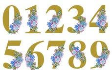 Blumenaquarellzahlkunst auf weißem Hintergrund stock abbildung