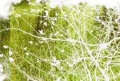 Blumenartfeld Lizenzfreie Stockbilder