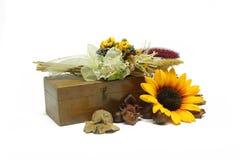 Blumenaufbau Lizenzfreie Stockbilder