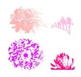 Blumenaufbau Stockbild