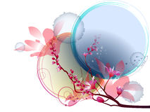 Blumenaufbau Stockfotos