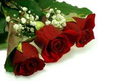 Blumenaufbau mit drei netten roten Rosen Lizenzfreie Stockbilder
