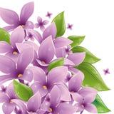 Blumenauslegung mit Flieder Stockbild