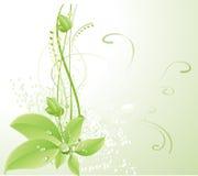 Blumenauslegungelement Stockbild