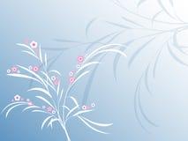 Blumenauszug Lizenzfreies Stockfoto
