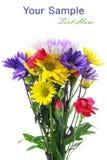 Blumenbündel stockbilder