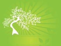 Blumenbaumeinladung lizenzfreie abbildung