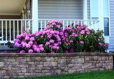 Blumenbeet durch Portal Stockfoto