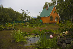 Blumenbeet im Teich an der Hazienda Lizenzfreies Stockbild