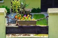 Blumenbeet im Yard Lizenzfreie Stockfotos