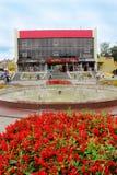 Blumenbeet mit Blumen von salvia in Drohobych-Stadt Lizenzfreie Stockfotografie