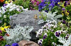 Blumenbeet mit einer Zahl einer Eidechse auf einem Stein Lizenzfreies Stockfoto