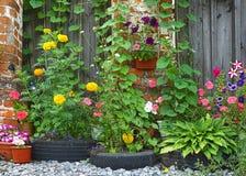 Blumenbeet mit hellen Farben (auf dem Hintergrund des Zauns) Stockbilder
